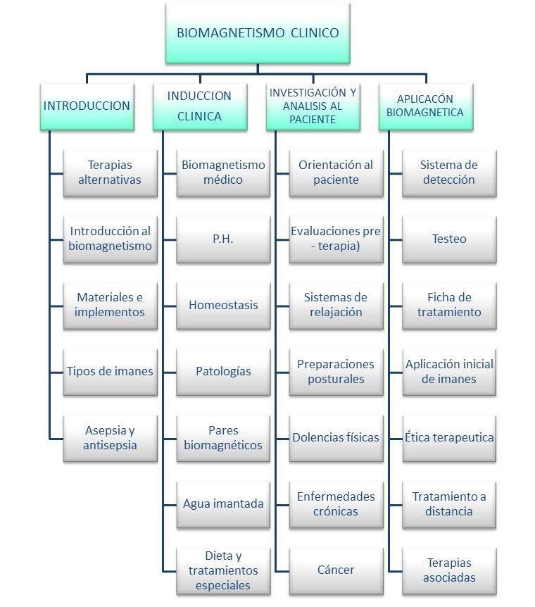 malla-biomagnetismo